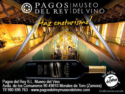 Pagos del Rey - Museo del Vino